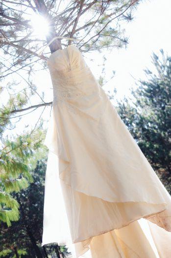 trash the dress-